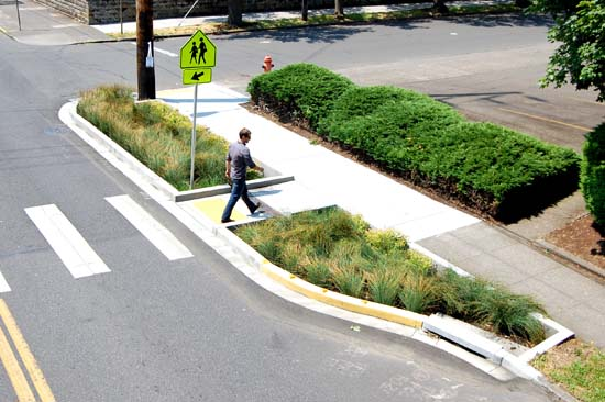 Drainage Solutions Bioswale Interlaken We Dig Portland